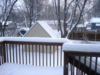 Dec 5 2008 055
