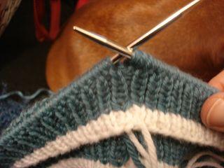 Tiny sweaters 005